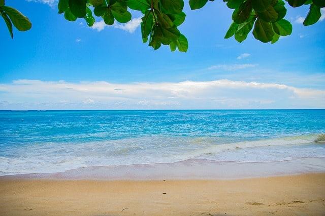 ראשית - הפלגות להוואי