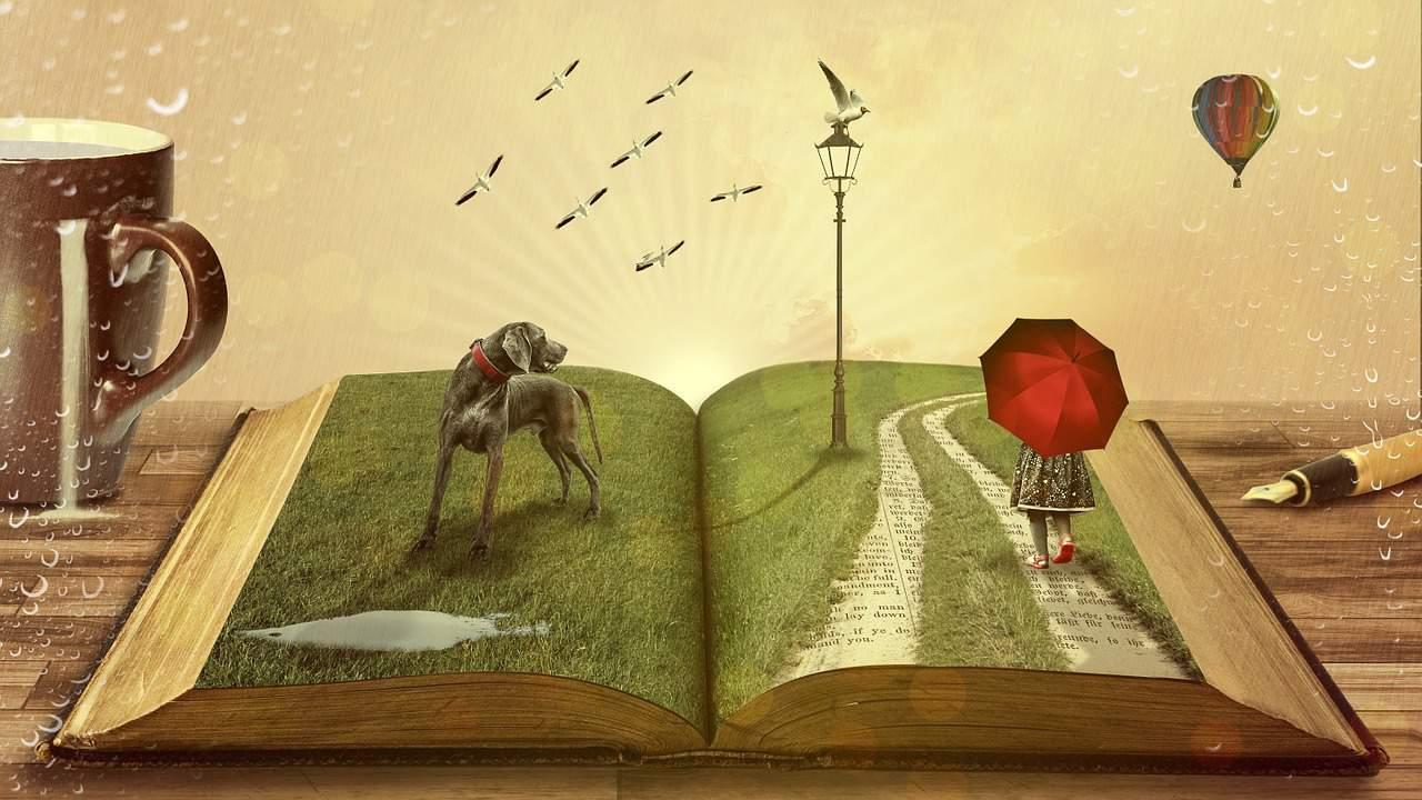 ספר פתוח
